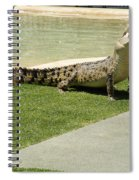Crocodile Spiral Notebook