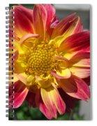 Dahlia Named Brian's Sun Spiral Notebook