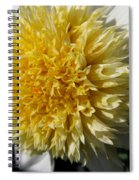 Dahlia Named Platinum Blonde Spiral Notebook