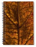 Dogwood Leaf Backlit Spiral Notebook