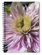 Double Clematis Named Empress Spiral Notebook