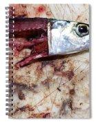 Fish Bait Spiral Notebook