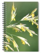 Flowering Brome Grass Spiral Notebook
