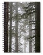 Foggy Coast Redwood Forest Spiral Notebook