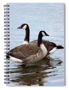 Geese Spiral Notebook
