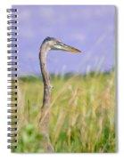 Great Blue Heron On The Prairie Spiral Notebook