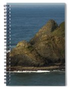 Heceta Head Lighthouse Spiral Notebook