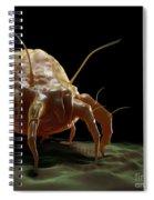 House Dust Mite Spiral Notebook