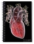 Human Heart Spiral Notebook