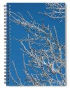 Ice Storm Poplars Spiral Notebook