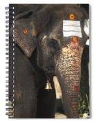 Lakshmi Temple Elephant Spiral Notebook