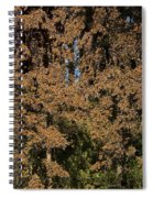 Monarch Butterflies Spiral Notebook