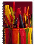 Multi Colored Paint Brushes Spiral Notebook