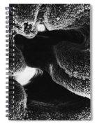 Oviduct Entrance, Sem Spiral Notebook