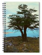 Panoramic View Of Argentinas Largest Spiral Notebook