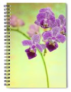 Purple Orchid-8 Spiral Notebook
