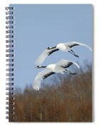 Red-crowned Cranes Spiral Notebook