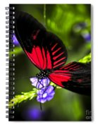 Red Heliconius Dora Butterfly Spiral Notebook