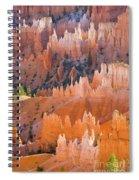 Sandstone Hoodoos In Bryce Canyon  Spiral Notebook