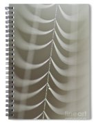 Spider Web With Dew Drops  Spiral Notebook