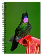 Tourmaline Sunangel Spiral Notebook