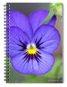 Viola Named Sorbet Blue Heaven Jump-up Spiral Notebook