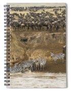 Wildebeests Crossing Mara River, Kenya Spiral Notebook