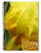 Yellow Iris Spiral Notebook