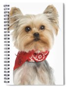 Yorkshire Terrier Dog Spiral Notebook