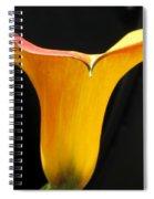 Zantedeschia Named Flame Spiral Notebook