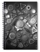 50 Diatom Species Arranged  Spiral Notebook