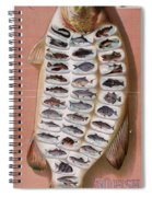50 Fish From American Waters Spiral Notebook
