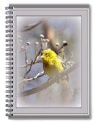 5393-006 - Pine Warbler-fb Spiral Notebook