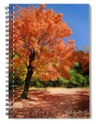 A Blanket Of Fall Colors Spiral Notebook