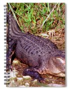 American Alligator Spiral Notebook