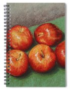 6 Apples Washed And Waiting Spiral Notebook