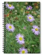 6 Asters Left Spiral Notebook