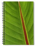 Banana Leaf Spiral Notebook