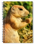Black-tailed Prairie Dog Spiral Notebook