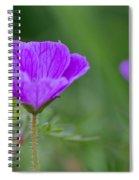 Bloody Geranium Wild Flower Spiral Notebook