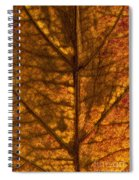 Dogwood Leaf Backlit Spiral Notebook