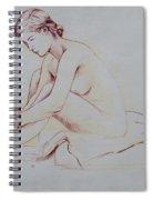 Figure  Study Spiral Notebook