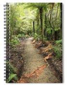 Forest Trail Spiral Notebook