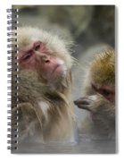 Japanese Macaques Spiral Notebook