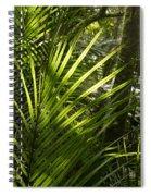 Jungle Light Spiral Notebook