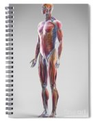 Muscle System Spiral Notebook