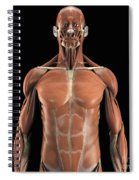 Muscles Of The Upper Body Spiral Notebook