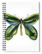 6 Queen Alexandra Butterfly Spiral Notebook