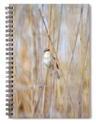 Sedge Warbler Spiral Notebook