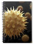 Sunflower Pollen Spiral Notebook